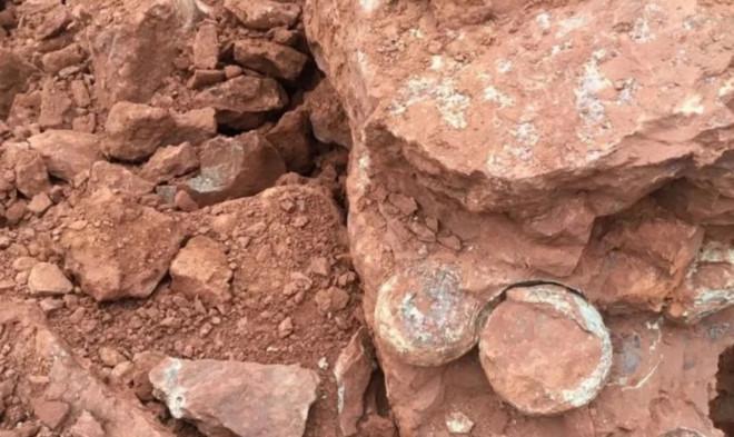 Xây nhà, bất ngờ đào được 'một ổ' trứng khủng long còn nguyên Ảnh 1