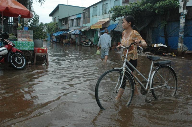 Triều cường bủa vây TP.Hồ Chí Minh Ảnh 3