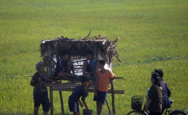 Hình ảnh chân thực về cuộc sống ở ngoại ô Bình Nhưỡng Ảnh 10