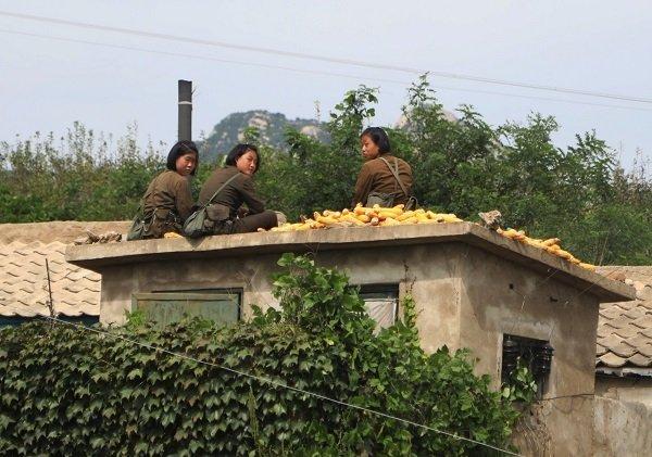 Hình ảnh chân thực về cuộc sống ở ngoại ô Bình Nhưỡng Ảnh 9