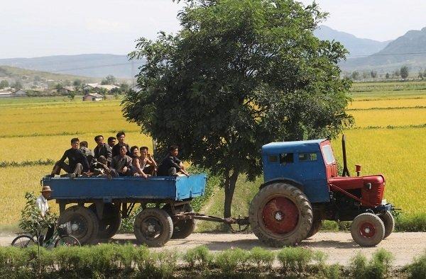 Hình ảnh chân thực về cuộc sống ở ngoại ô Bình Nhưỡng Ảnh 3