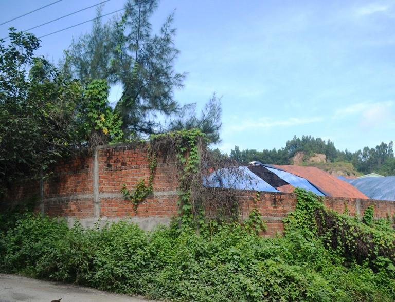 Đà Nẵng: Dân bức xúc bởi kho chứa than gây ô nhiễm Ảnh 2