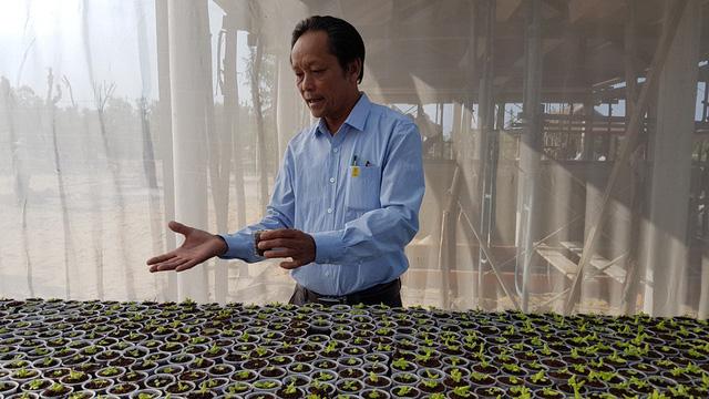 'Lão khùng' kỹ sư xây dựng rẽ ngang, khởi nghiệp trồng rau sạch Ảnh 3