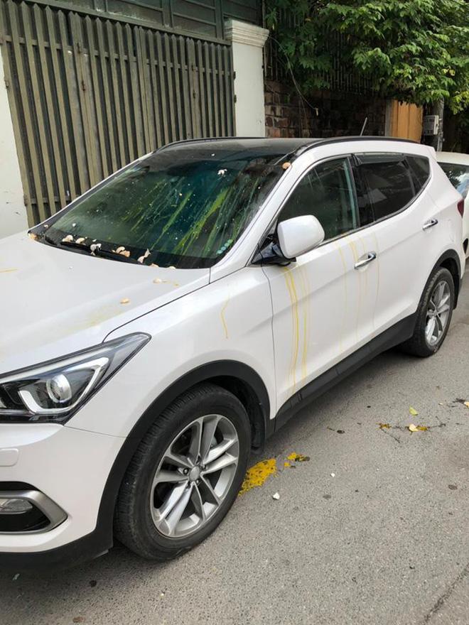 Bị ô tô đỗ trước cửa chắn lối ra vào, chủ nhà tức giận ném trứng sống vương vãi khắp xe dậy mùi tanh cả khu phố Ảnh 2