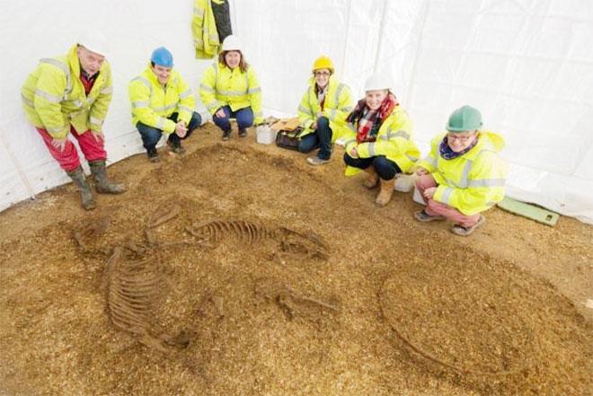 Khai quật nhiều xác người, cỗ xe và ngựa từ 3.500 năm trước Ảnh 1