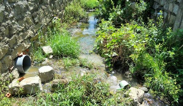 Xả nước thải ra môi trường, 4 công ty bị phạt hơn 400 triệu đồng Ảnh 1