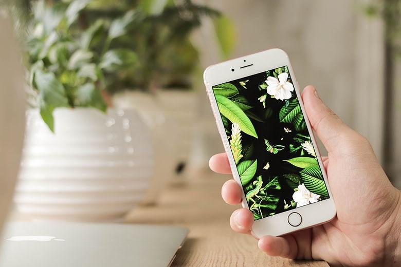 Tầm 3-5 triệu, nên mua iPhone nào? Ảnh 3