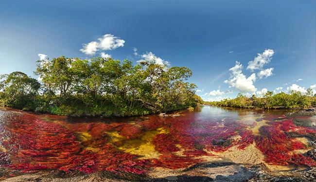 Khó tin nhưng có thật: Con sông có 5 màu sắc biến đổi theo mùa Ảnh 6