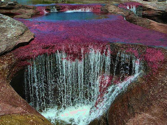 Khó tin nhưng có thật: Con sông có 5 màu sắc biến đổi theo mùa Ảnh 5