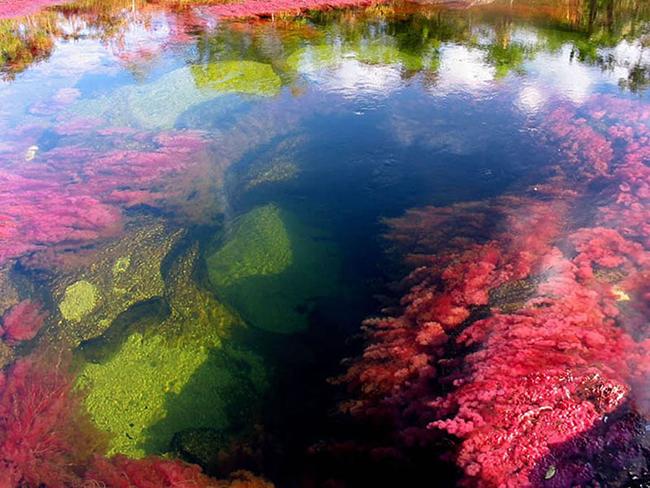 Khó tin nhưng có thật: Con sông có 5 màu sắc biến đổi theo mùa Ảnh 8