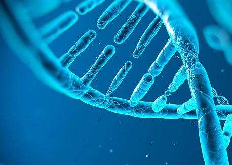 Trung Quốc tạm ngừng nghiên cứu về con người sau thí nghiệm 'biến đổi gien' trẻ sơ sinh gây chấn động ảnh 1