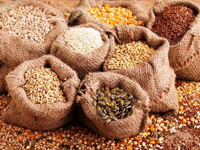 Xuất cấp hơn 1.200 tấn hạt giống hỗ trợ 3 tỉnh thiệt hại do thiên tai Ảnh 1