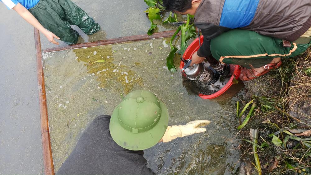 Sự cố dầu tràn ở Thanh Hóa: Cây héo rũ, cá tôm chết nổi đầy đồng Ảnh 7