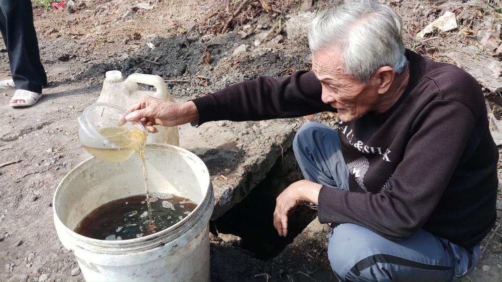 Sự cố dầu tràn ở Thanh Hóa: Cây héo rũ, cá tôm chết nổi đầy đồng Ảnh 5