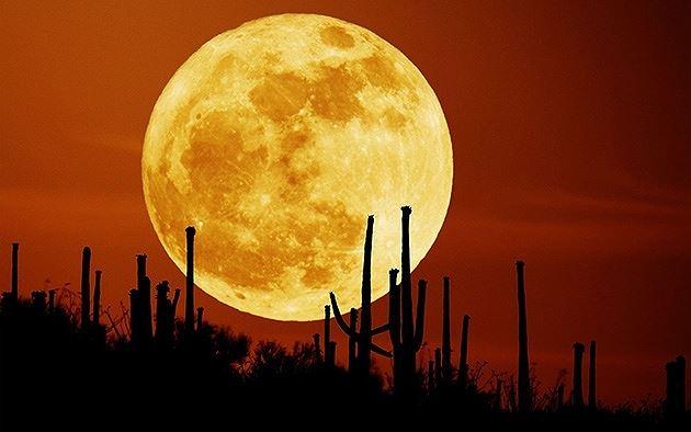Việt Nam đón siêu trăng vào rằm tháng Giêng Ảnh 1