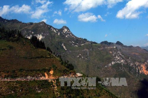 Cao nguyên đá Đồng Văn thu hút hàng ngàn du khách dịp Tết Ảnh 2