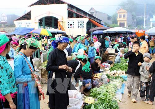 Cao nguyên đá Đồng Văn thu hút hàng ngàn du khách dịp Tết Ảnh 1