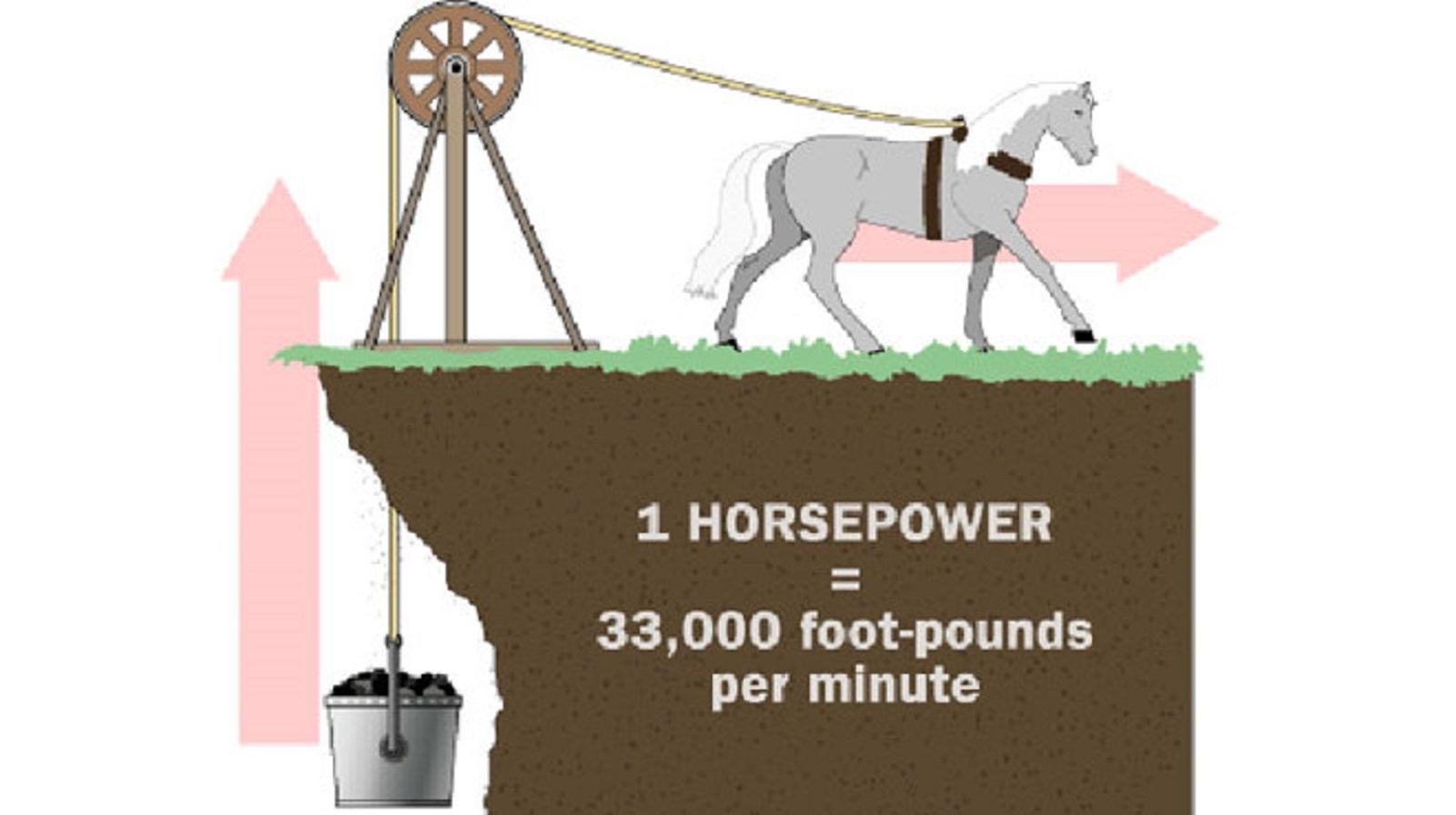 Tại sao lại dùng 'sức ngựa' để đo công suất động cơ ô tô? Ảnh 2