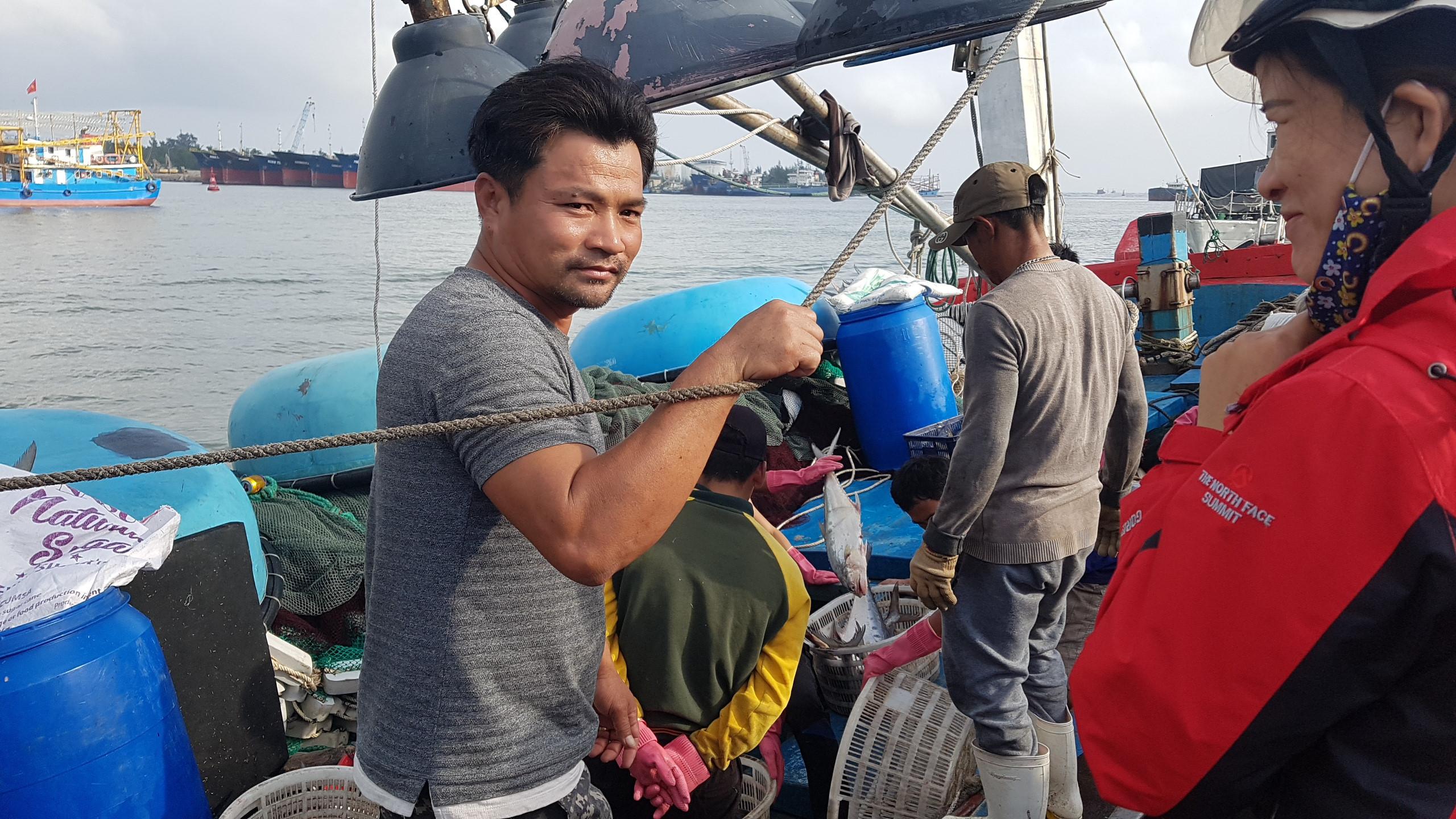 Cận cảnh mẻ cá 120 tấn trên biển, cả chục ngàn con chờ đánh bắt Ảnh 2