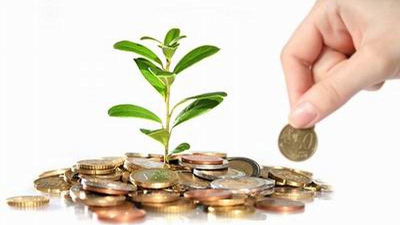 Tổ chức tài chính vi mô thực hiện thống kê tài khoản kế toán, báo cáo tài chính thế nào? Ảnh 1