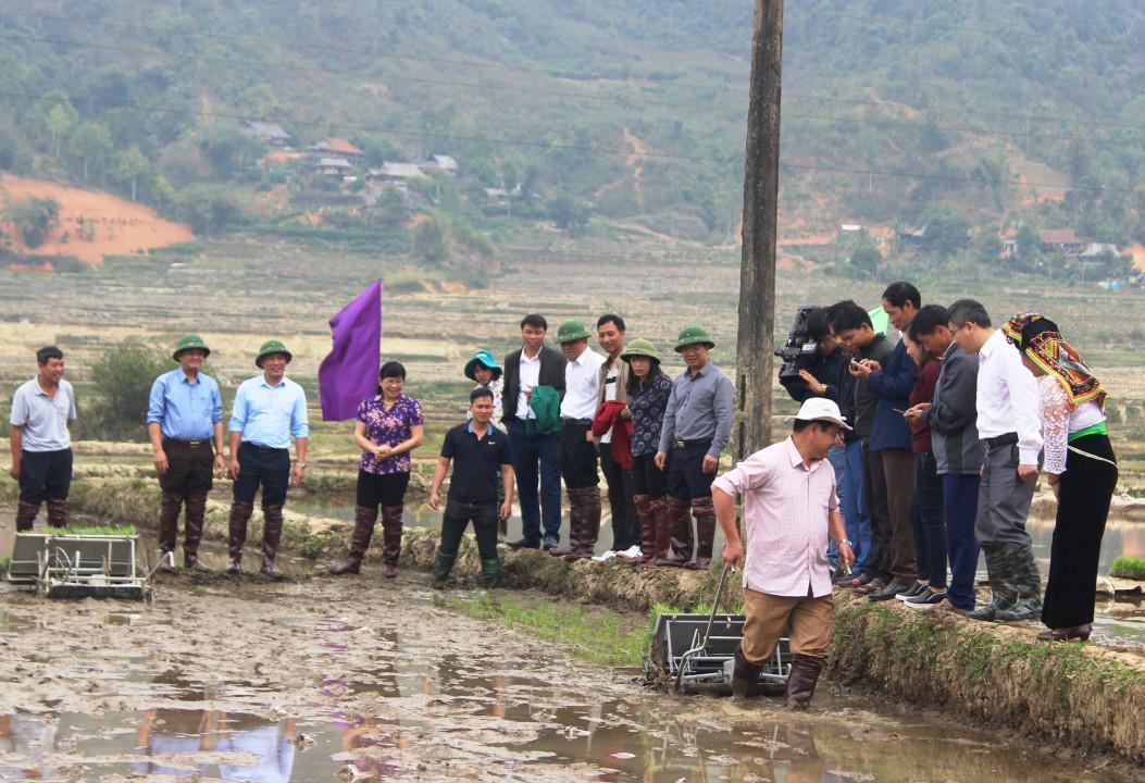 Điện Biên: Tổ chức Lễ Khai Xuân sản xuất nông, lâm nghiệp Ảnh 2