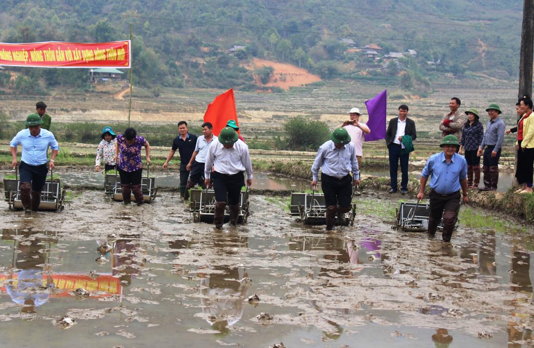 Điện Biên: Tổ chức Lễ Khai Xuân sản xuất nông, lâm nghiệp Ảnh 1