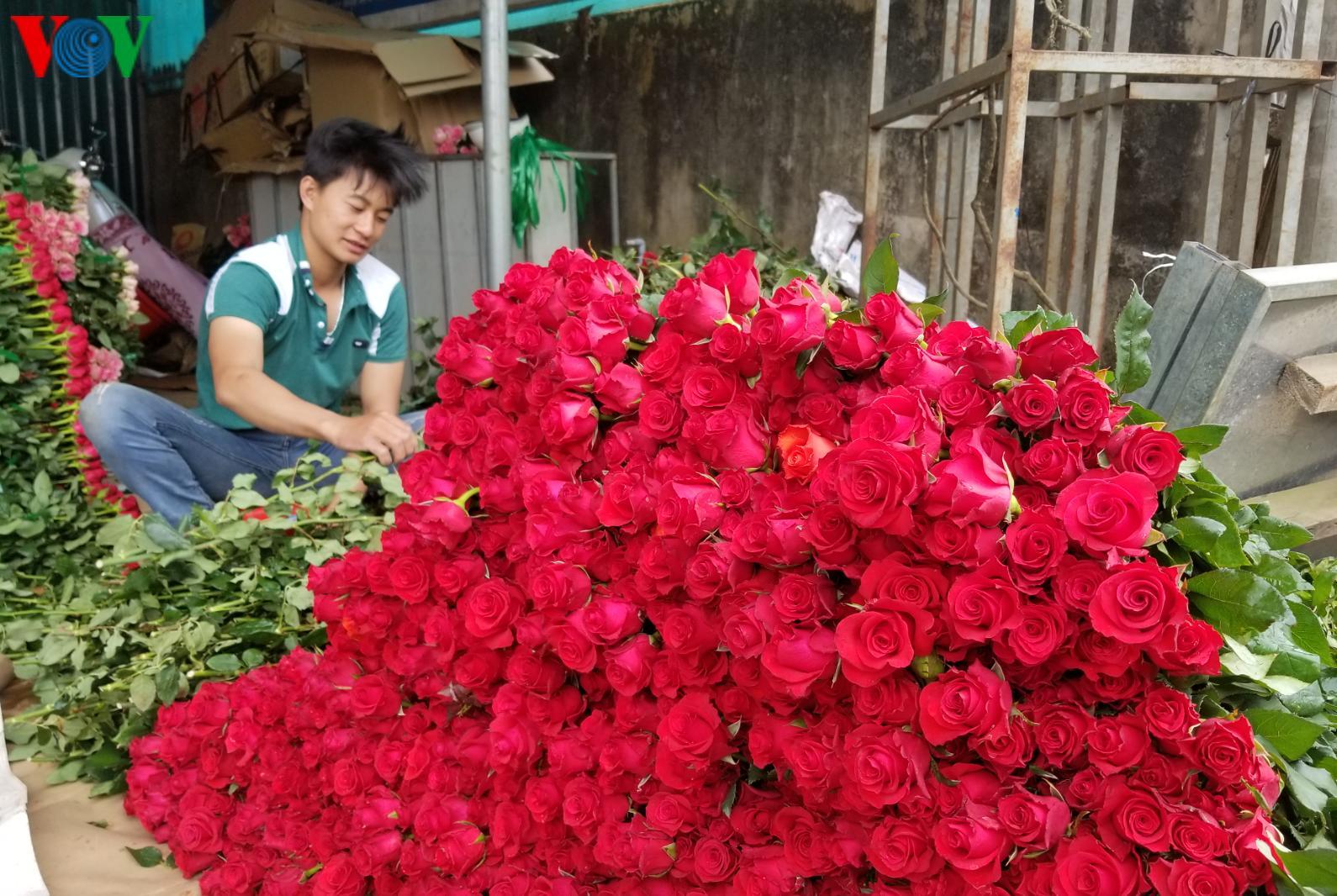 Đà Lạt: Giá hoa hồng cung cấp thị trường ngày Valentine tăng mạnh Ảnh 1