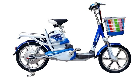 Cảnh báo xe đạp điện Trung Quốc giả 'made in Vietnam' xuất qua EU Ảnh 1