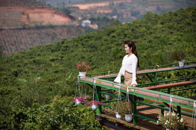 Sau thời gian dài cứu vãn hôn nhân, bà Lê Hoàng Diệp Thảo đành chấp nhận chia tay ông Đặng Lê Nguyên Vũ Ảnh 1