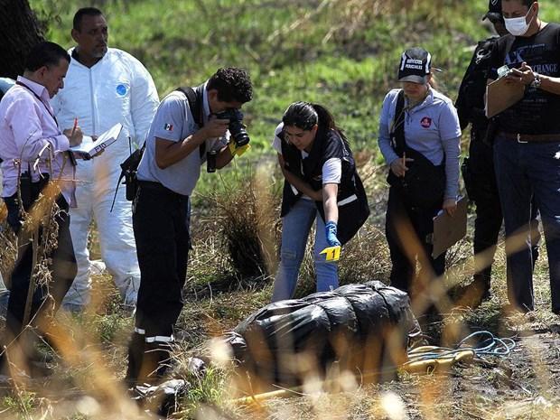 Mexico phát hiện 19 thi thể đang phân hủy tại một kênh thoát nước Ảnh 1