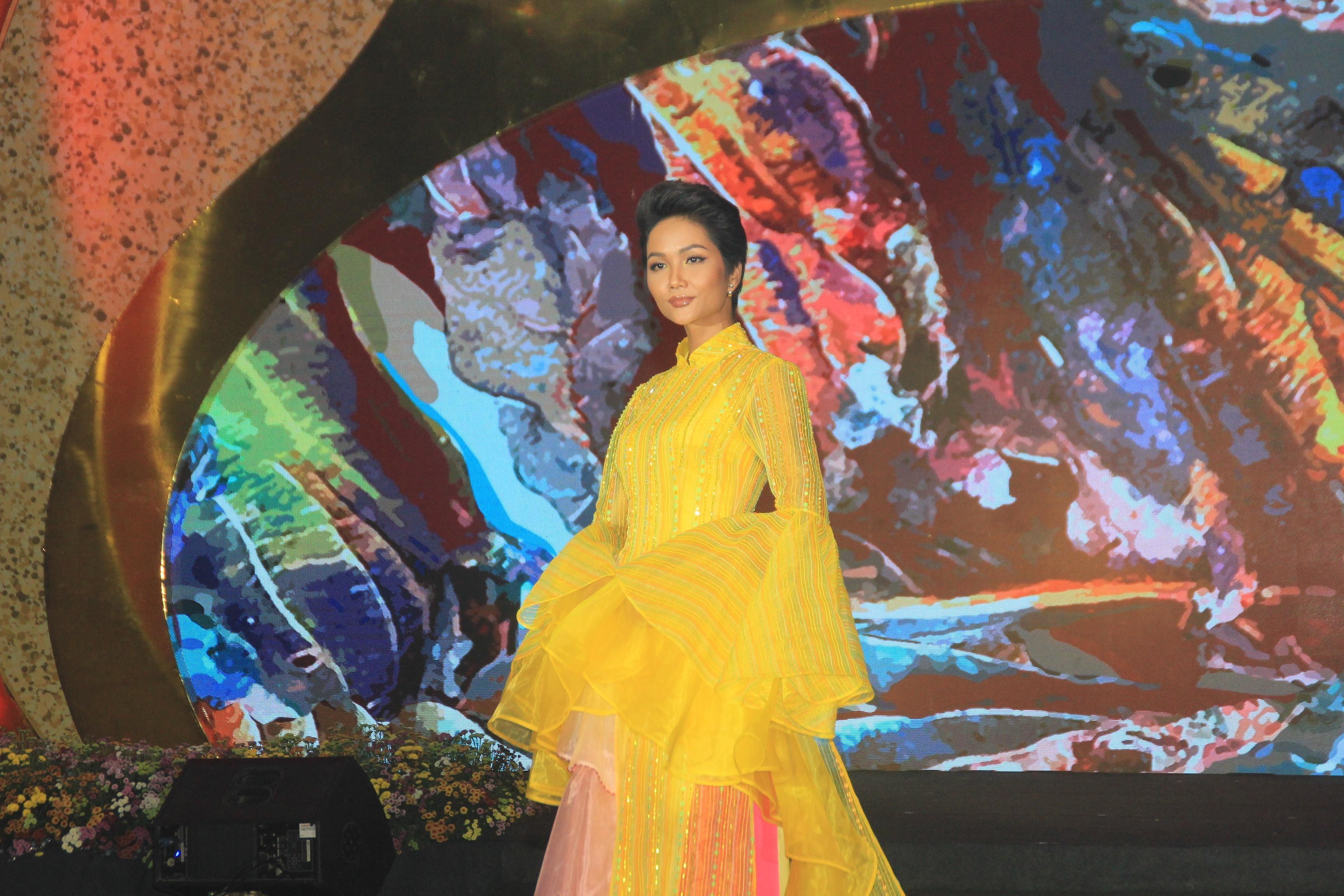 H'Hen Niê lộng lẫy diễn catwalk đêm bế mạc Lễ hội Áo dài TPHCM 2019 Ảnh 2