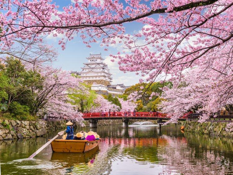 15 địa điểm du lịch yêu thích của giới tỷ phú năm 2019 Ảnh 15