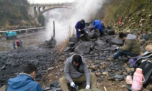 Sửng sốt với hóa thạch hơn 500 triệu năm tuổi tại Trung Quốc Ảnh 2