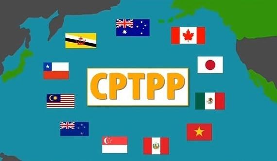 CPTPP: Từ góc nhìn an ninh-quốc phòng Ảnh 1