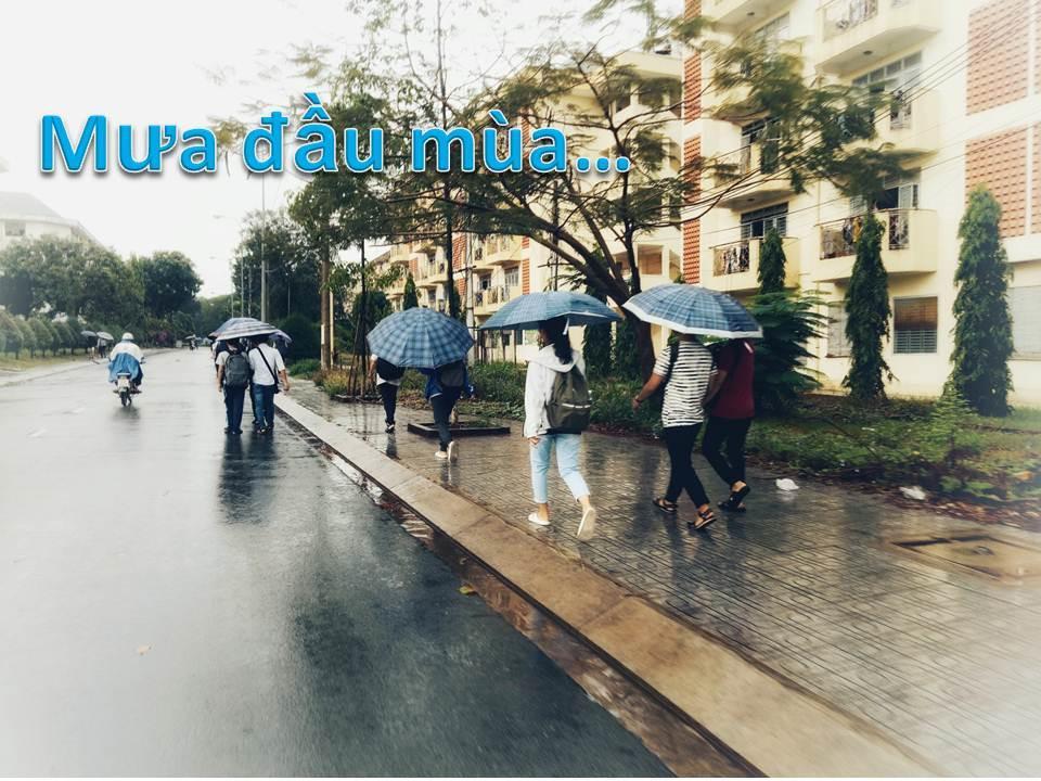 Sài Gòn lại chợt mưa rồi… chợt nắng Ảnh 1