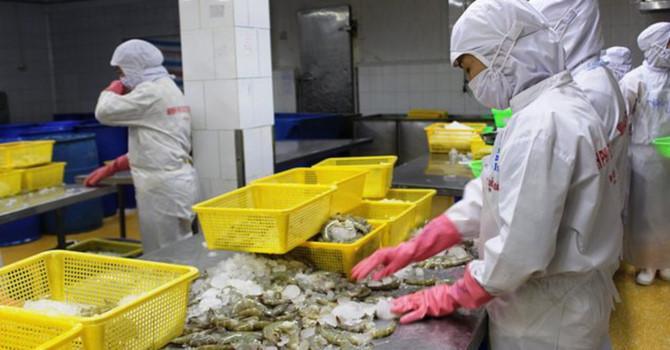 Hoa Kỳ công bố thuế chống bán phá giá 0% cho tôm Việt Ảnh 1