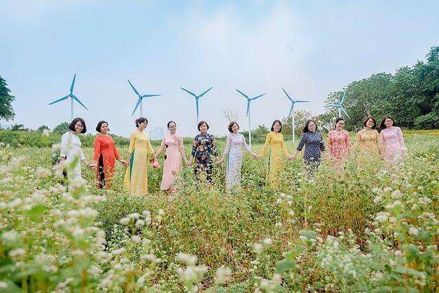 Mãn nhãn vườn hoa tam giác mạch gần 1 ha ở Hà Nội 'hút' khách tham quan Ảnh 11