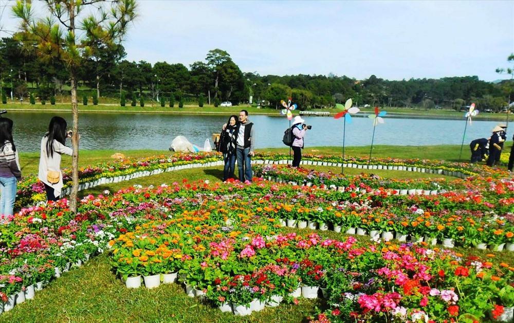 Đến Đà Lạt, nhất định không nên bỏ lỡ những vườn hoa đẹp nức tiếng này Ảnh 2
