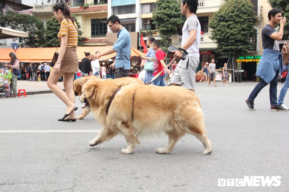 Phố đi bộ Hồ Gươm đặc kín người trong ngày nghỉ lễ giỗ Tổ Hùng Vương Ảnh 7