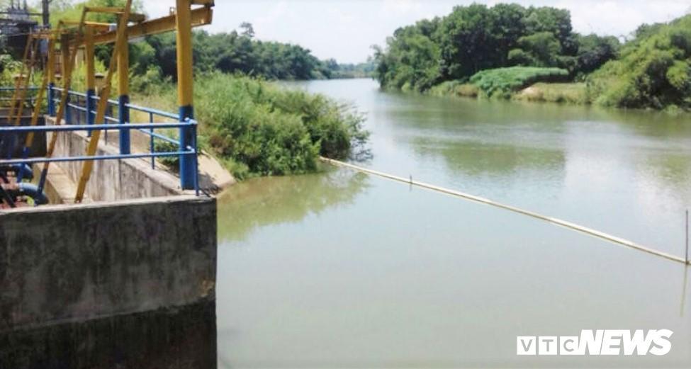 Nước sông Cầu Đỏ nhiễm mặn: Dawaco báo cáo khẩn Ảnh 1
