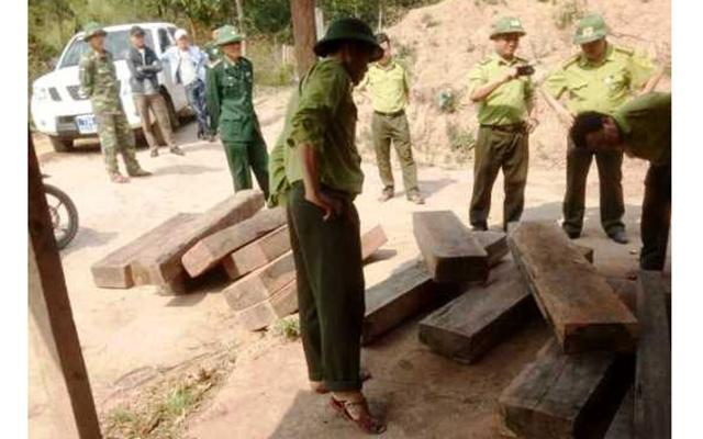 Khởi tố bảy đối tượng phá rừng đặc dụng Phong Nha - Kẻ Bàng Ảnh 1