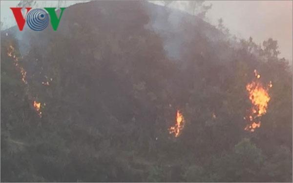 5 ngày, cả nước ghi nhận 45 vụ cháy rừng Ảnh 1