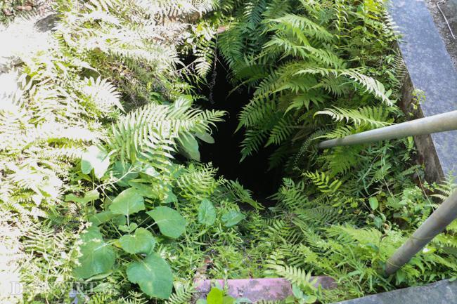 Khám phá hang ngầm dưới đình cổ giáp hồ Tây Ảnh 1