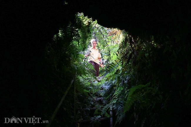 Khám phá hang ngầm dưới đình cổ giáp hồ Tây Ảnh 3