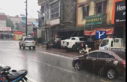 'Trận mưa vàng' giải cơn khát nước ở Sa Pa Ảnh 1