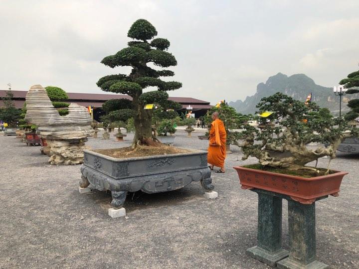 Các mặt hàng thủ công mỹ nghệ được trưng bày tại Đại lễ Phật đản Vesak 2019 Ảnh 8