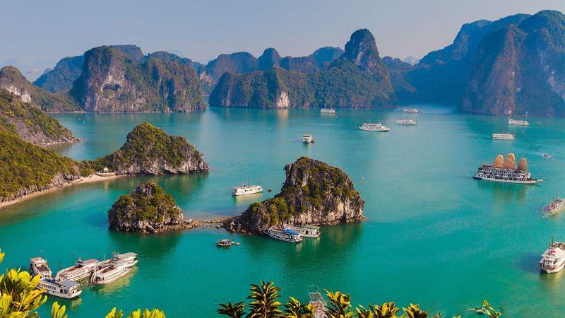'Chưa thăm Vịnh Hạ Long, chưa phải đến Việt Nam' Ảnh 3