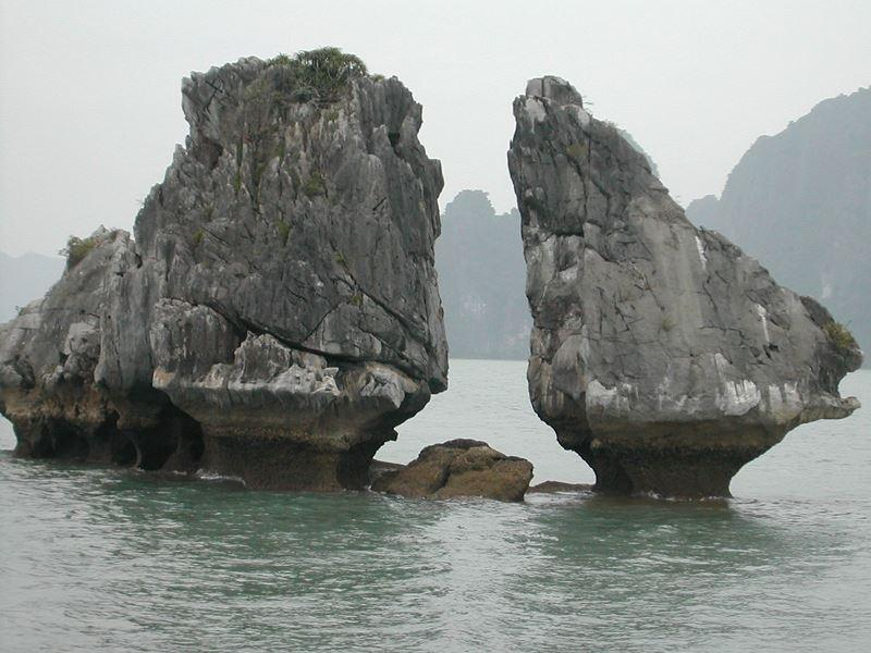 'Chưa thăm Vịnh Hạ Long, chưa phải đến Việt Nam' Ảnh 2