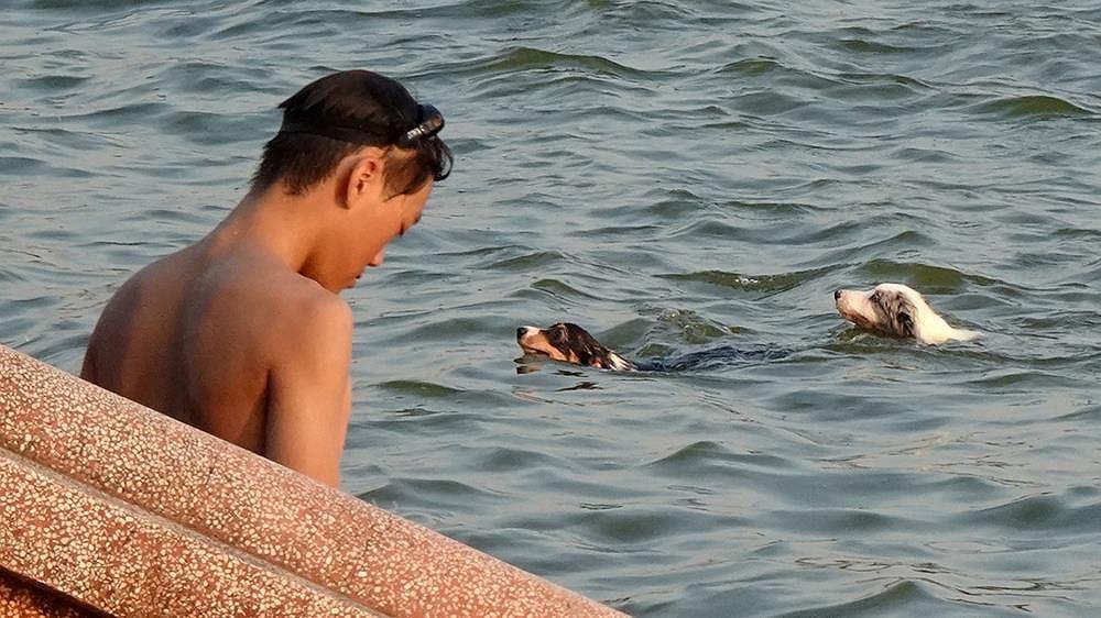 Người dân Hà Nội rủ nhau ra Hồ Tây tắm hạ nhiệt ngày cuối tuần nắng như nung Ảnh 5