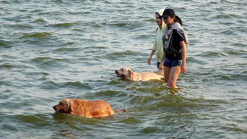 Người dân Hà Nội rủ nhau ra Hồ Tây tắm hạ nhiệt ngày cuối tuần nắng như nung Ảnh 4